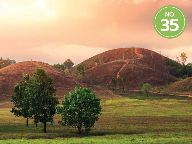 35.ภูเขาหญ้า